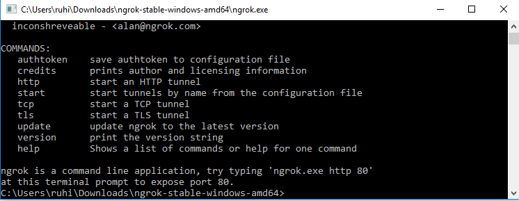 how to set up ngrok